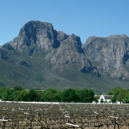 Franschoek Tour